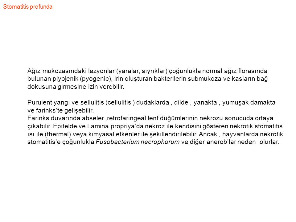 Stomatitis profunda