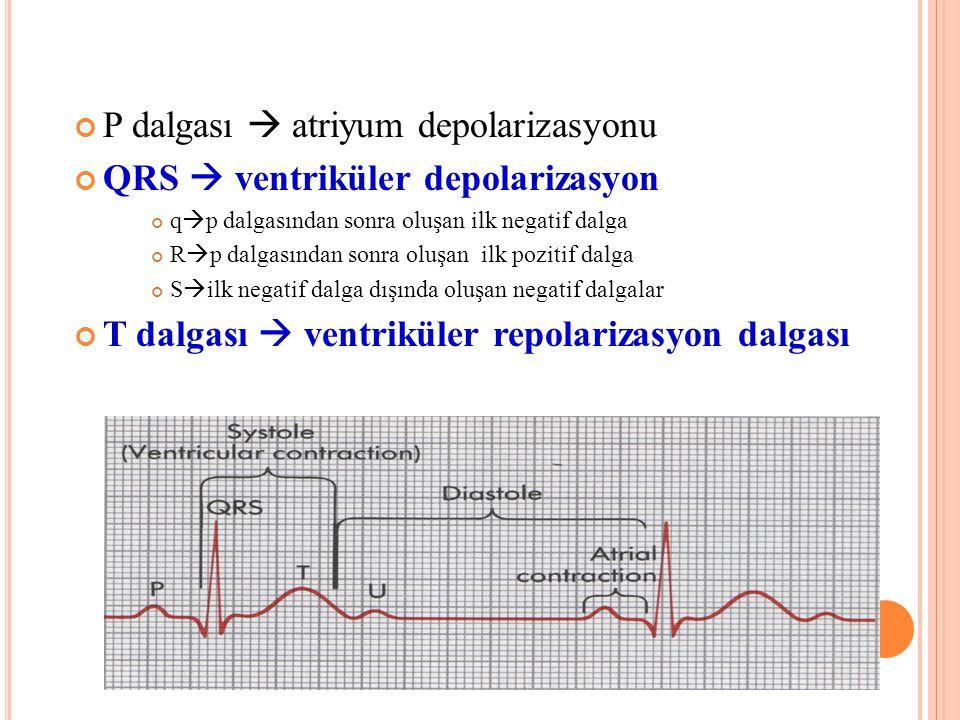 P dalgası  atriyum depolarizasyonu QRS  ventriküler depolarizasyon