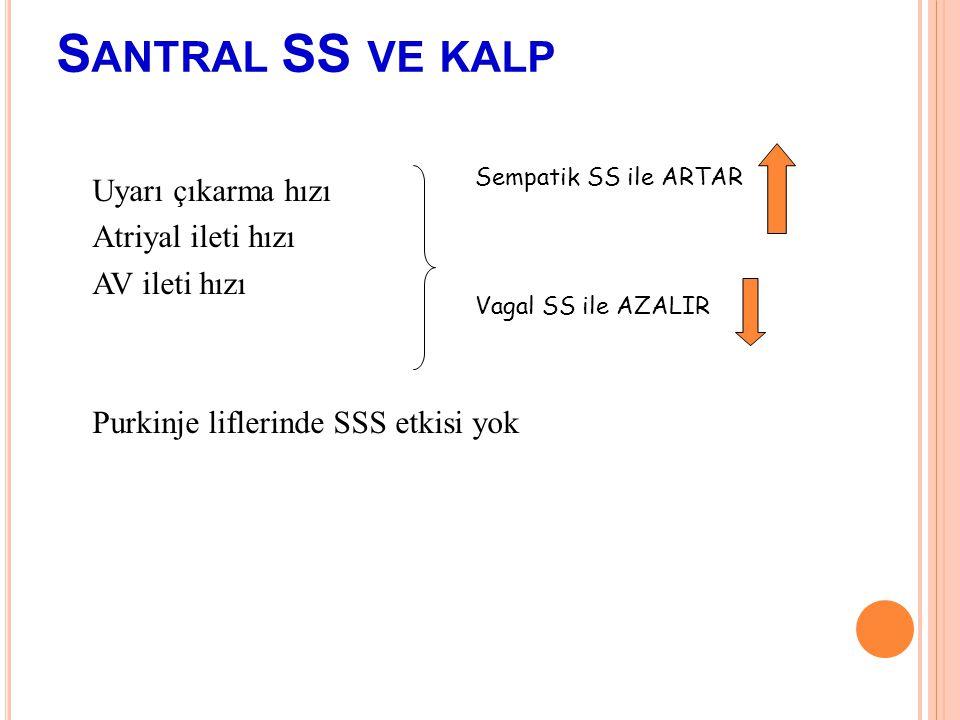 Santral SS ve kalp Sempatik SS ile ARTAR. Vagal SS ile AZALIR.