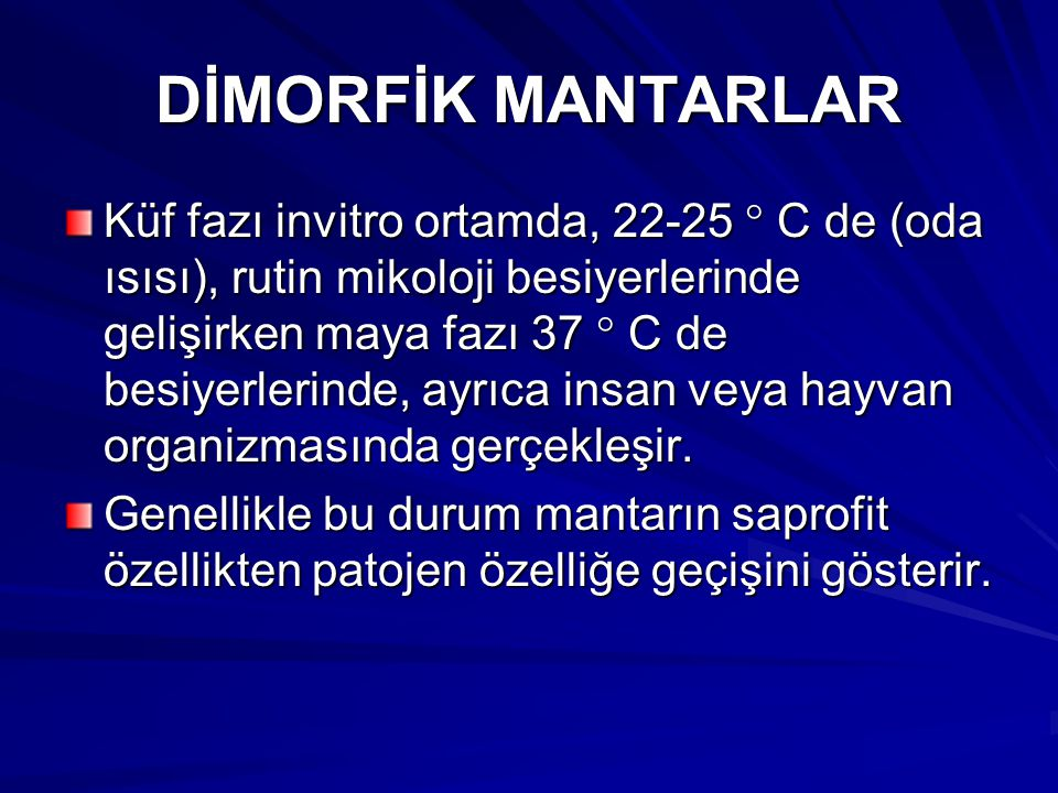DİMORFİK MANTARLAR