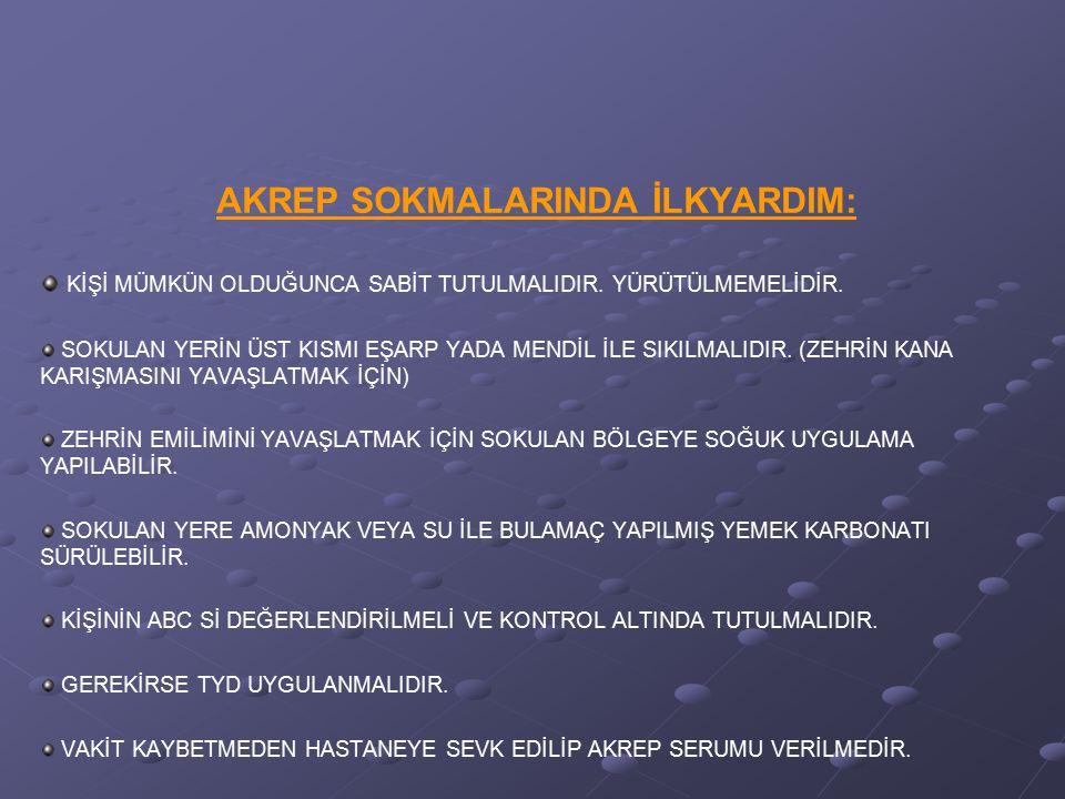 AKREP SOKMALARINDA İLKYARDIM: