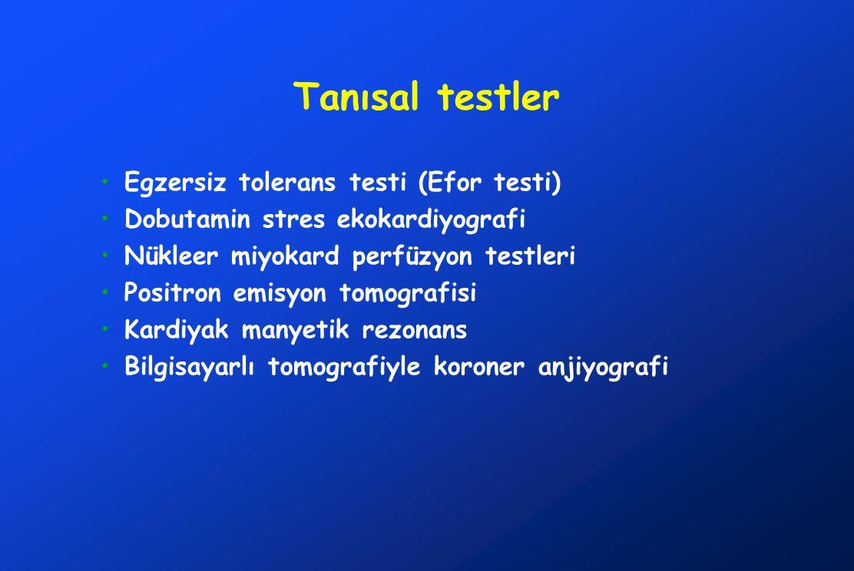 Tanısal testler Egzersiz tolerans testi (Efor testi)