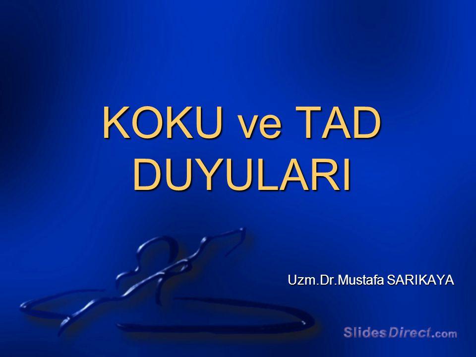 Uzm.Dr.Mustafa SARIKAYA