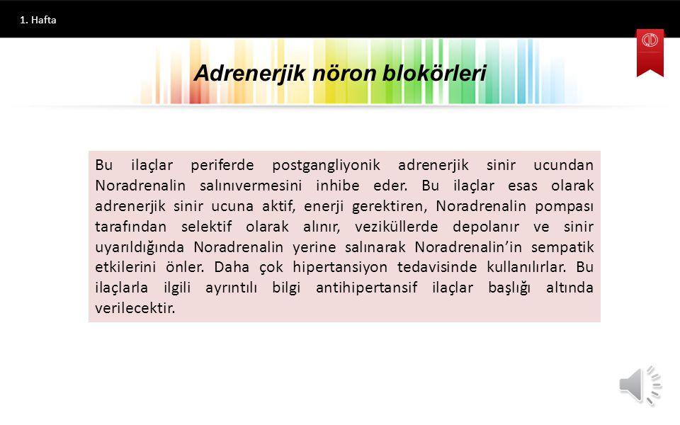 Adrenerjik nöron blokörleri
