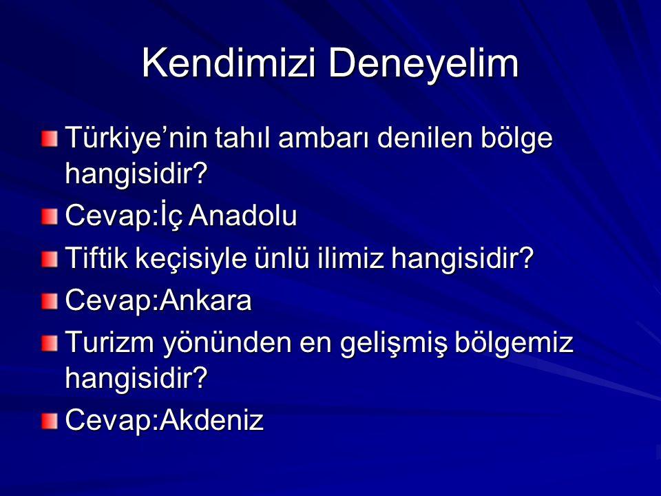 Kendimizi Deneyelim Türkiye'nin tahıl ambarı denilen bölge hangisidir