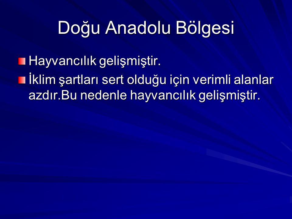 Doğu Anadolu Bölgesi Hayvancılık gelişmiştir.