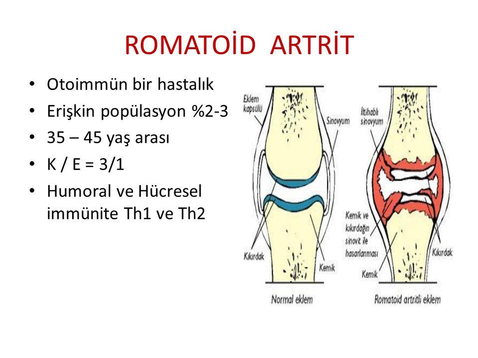 ROMATOİD ARTRİT Otoimmün bir hastalık Erişkin popülasyon %2-3
