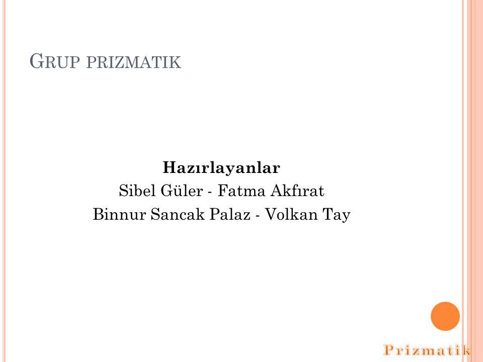 Grup prizmatik Hazırlayanlar Sibel Güler - Fatma Akfırat Binnur Sancak Palaz - Volkan Tay Prizmatik.