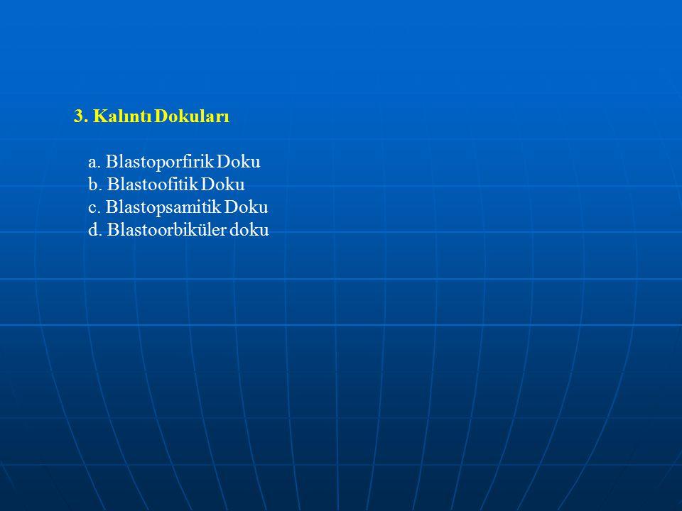 3. Kalıntı Dokuları a. Blastoporfirik Doku. b.