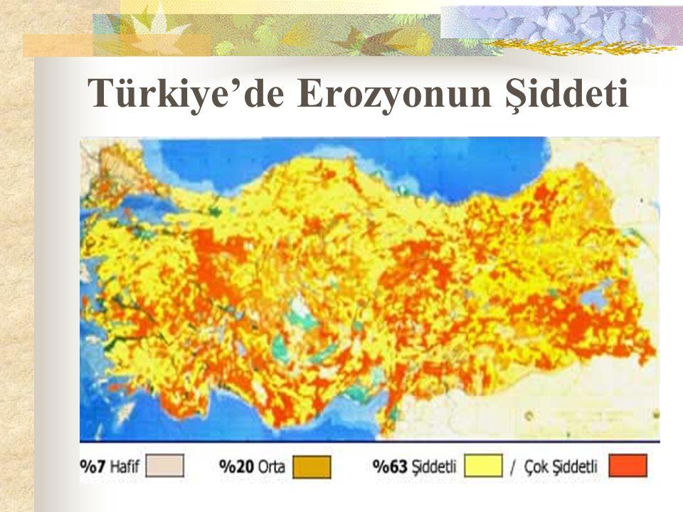 Türkiye'de Erozyonun Şiddeti
