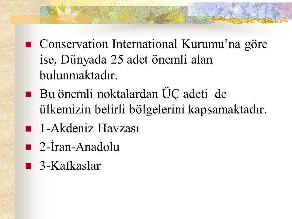 Conservation International Kurumu'na göre ise, Dünyada 25 adet önemli alan bulunmaktadır.