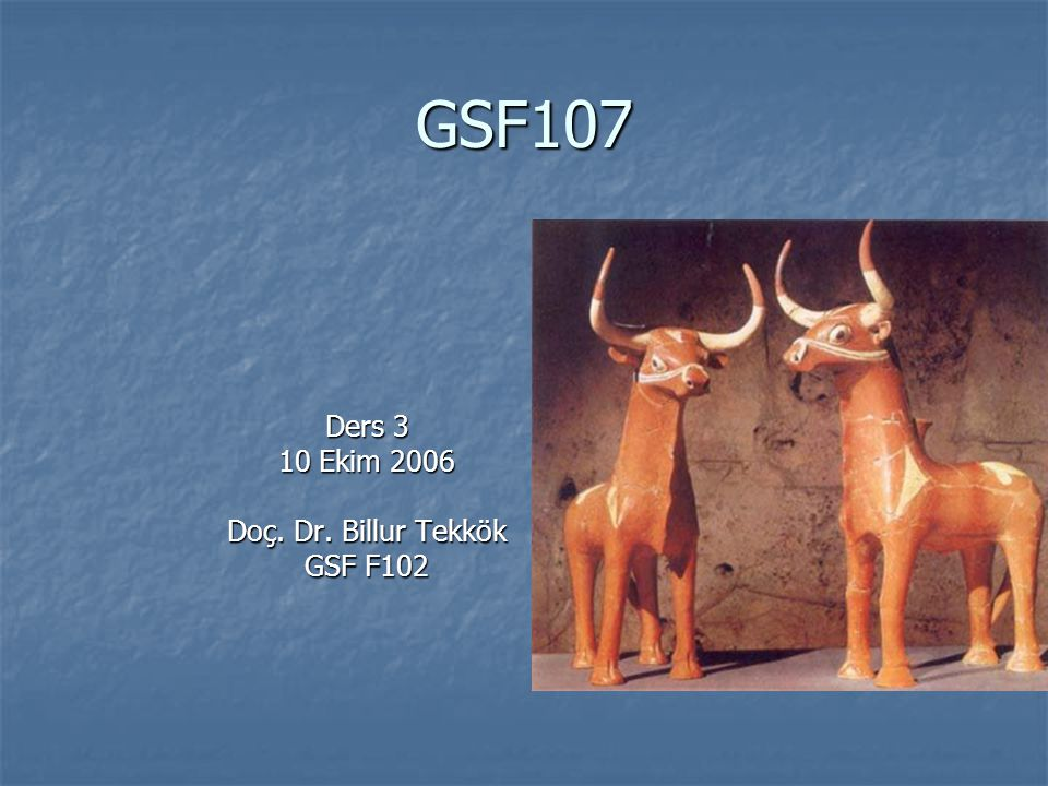 Ders 3 10 Ekim 2006 Doç. Dr. Billur Tekkök GSF F102