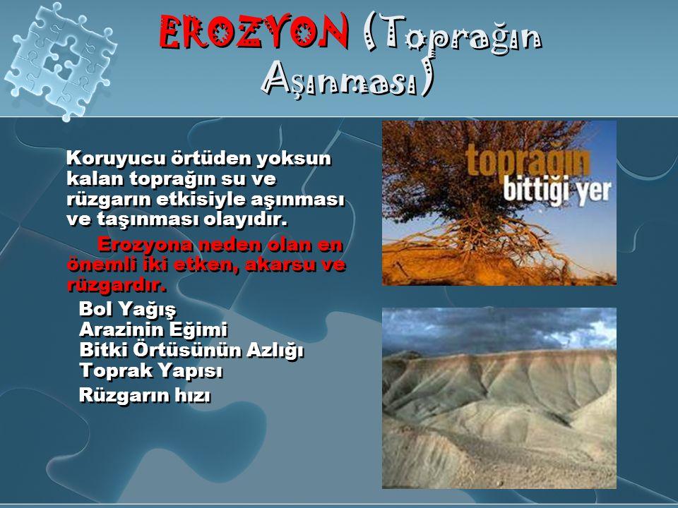EROZYON (Toprağın Aşınması)