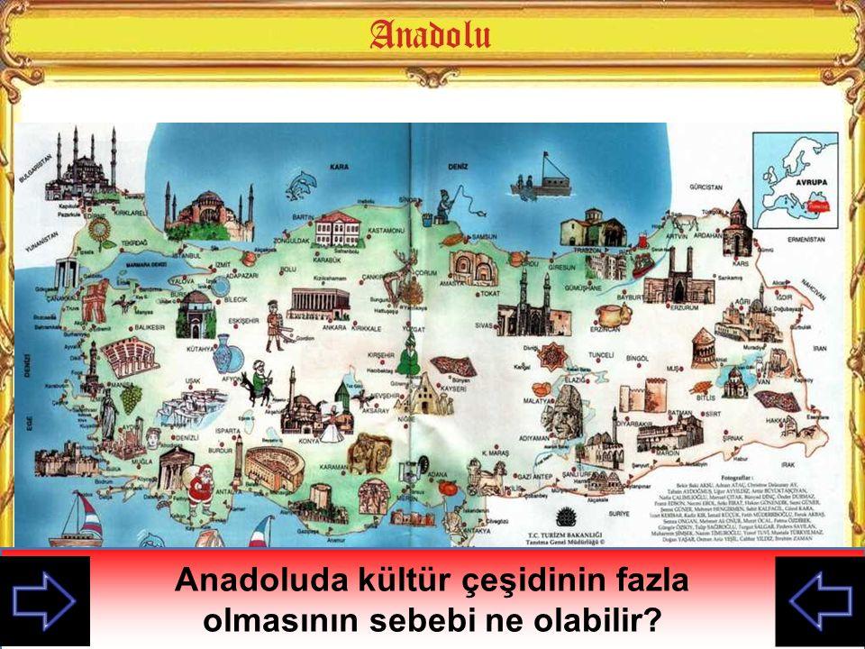 Anadoluda kültür çeşidinin fazla olmasının sebebi ne olabilir