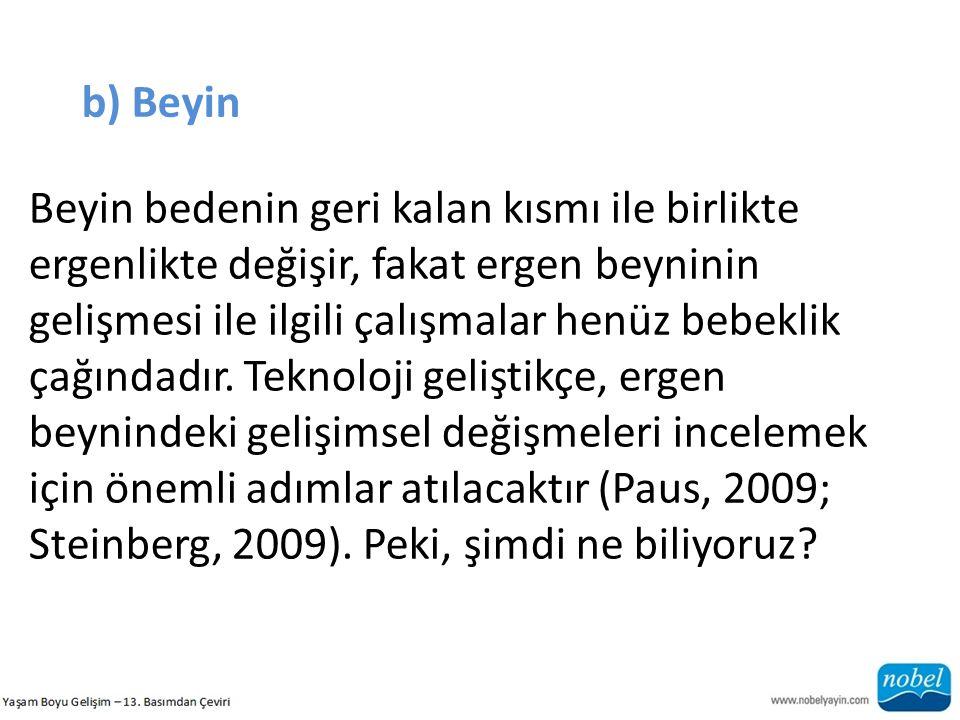 b) Beyin