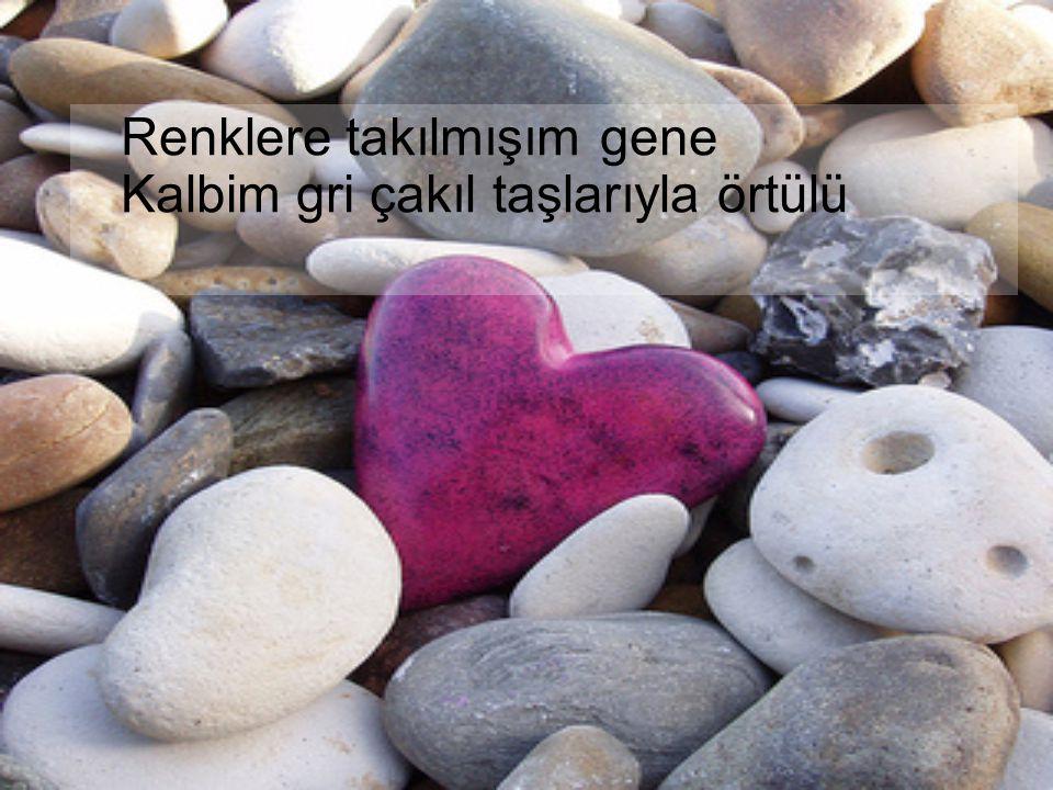 Renklere takılmışım gene Kalbim gri çakıl taşlarıyla örtülü