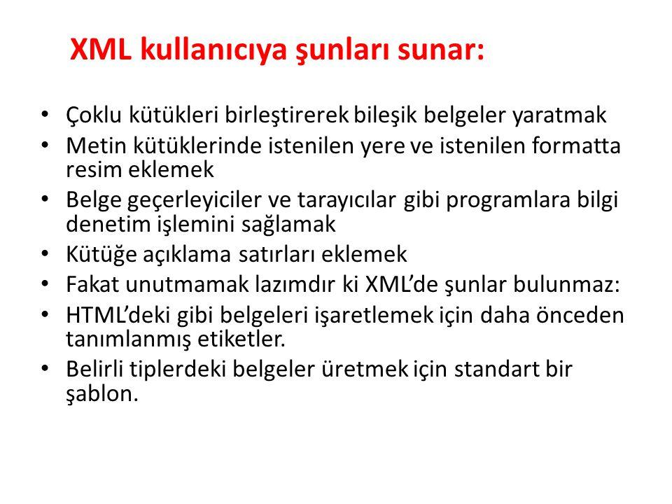 XML kullanıcıya şunları sunar: