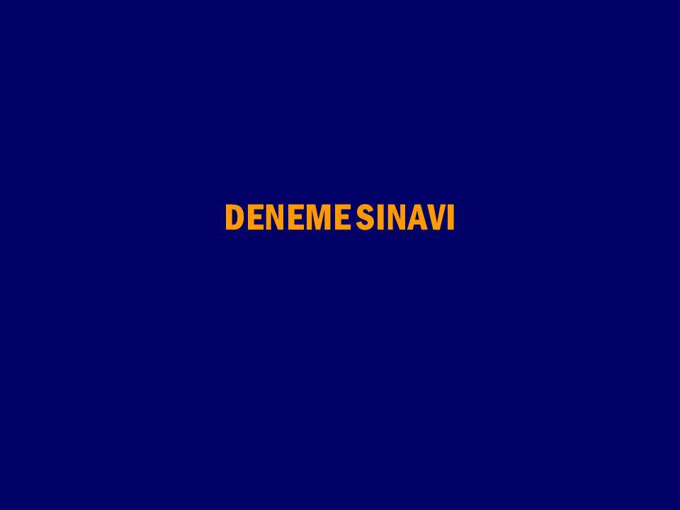 DENEME SINAVI