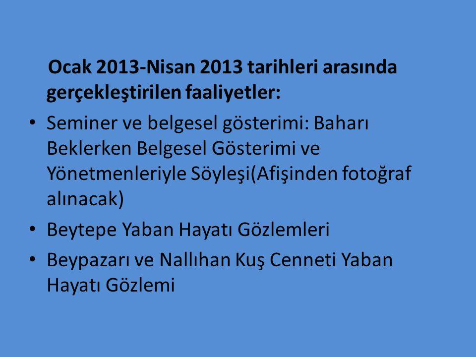 Ocak 2013-Nisan 2013 tarihleri arasında gerçekleştirilen faaliyetler: