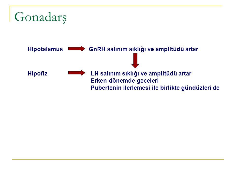 Gonadarş Hipotalamus GnRH salınım sıklığı ve amplitüdü artar Hipofiz