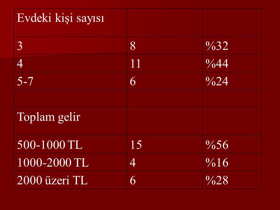 Evdeki kişi sayısı 3. 8. %32. 4. 11. %44. 5-7. 6. %24. Toplam gelir. 500-1000 TL. 15. %56.