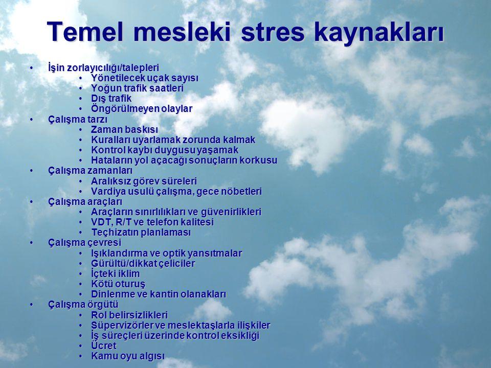 Temel mesleki stres kaynakları