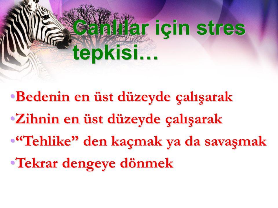 Canlılar için stres tepkisi…