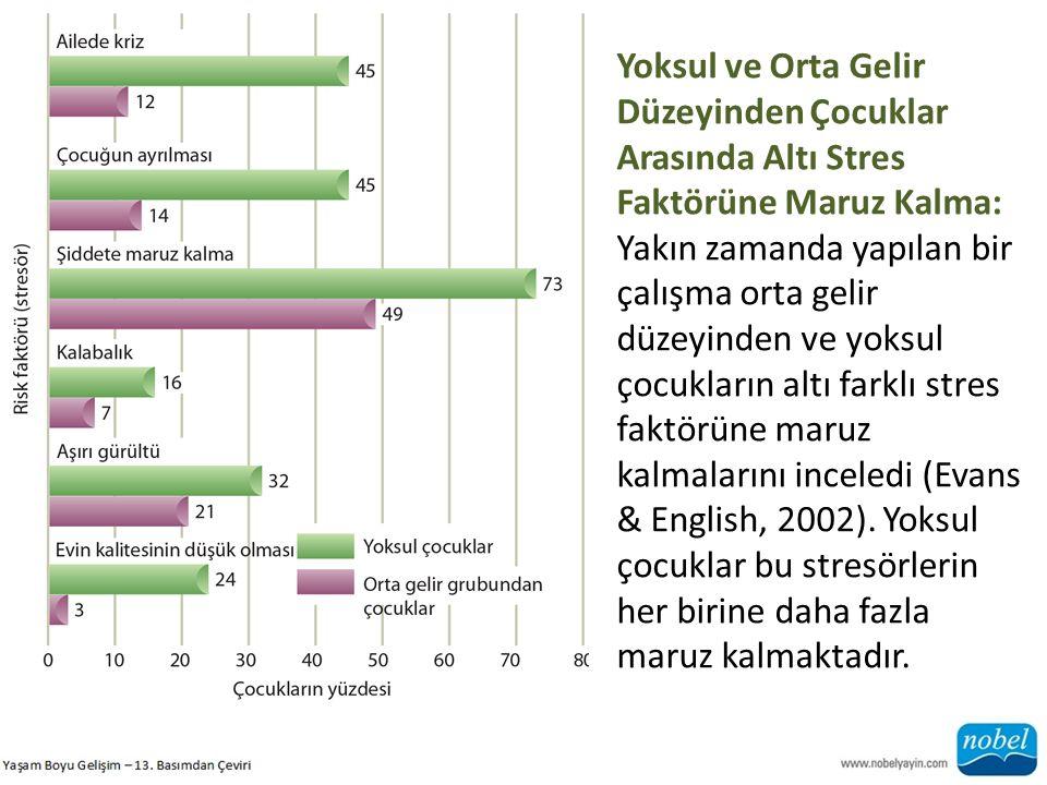 Yoksul ve Orta Gelir Düzeyinden Çocuklar Arasında Altı Stres Faktörüne Maruz Kalma: Yakın zamanda yapılan bir çalışma orta gelir düzeyinden ve yoksul