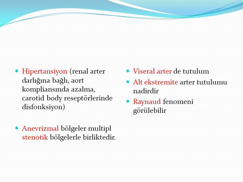 Hipertansiyon (renal arter darlığına bağlı, aort kompliansında azalma, carotid body reseptörlerinde disfonksiyon)