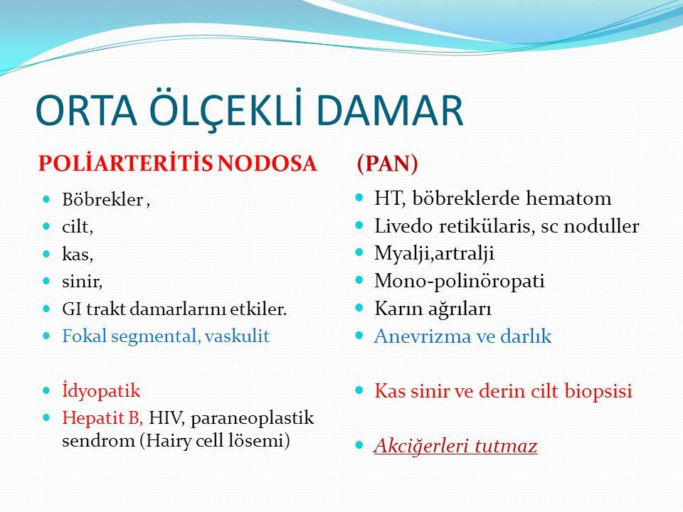 ORTA ÖLÇEKLİ DAMAR POLİARTERİTİS NODOSA (PAN) HT, böbreklerde hematom
