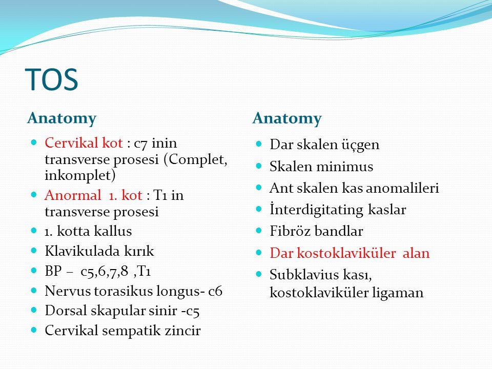 TOS Anatomy. Anatomy. Cervikal kot : c7 inin transverse prosesi (Complet, inkomplet) Anormal 1. kot : T1 in transverse prosesi.