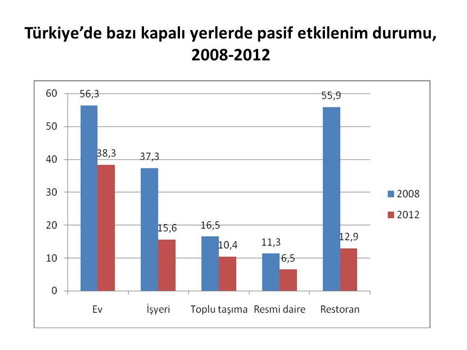 Türkiye'de bazı kapalı yerlerde pasif etkilenim durumu, 2008-2012