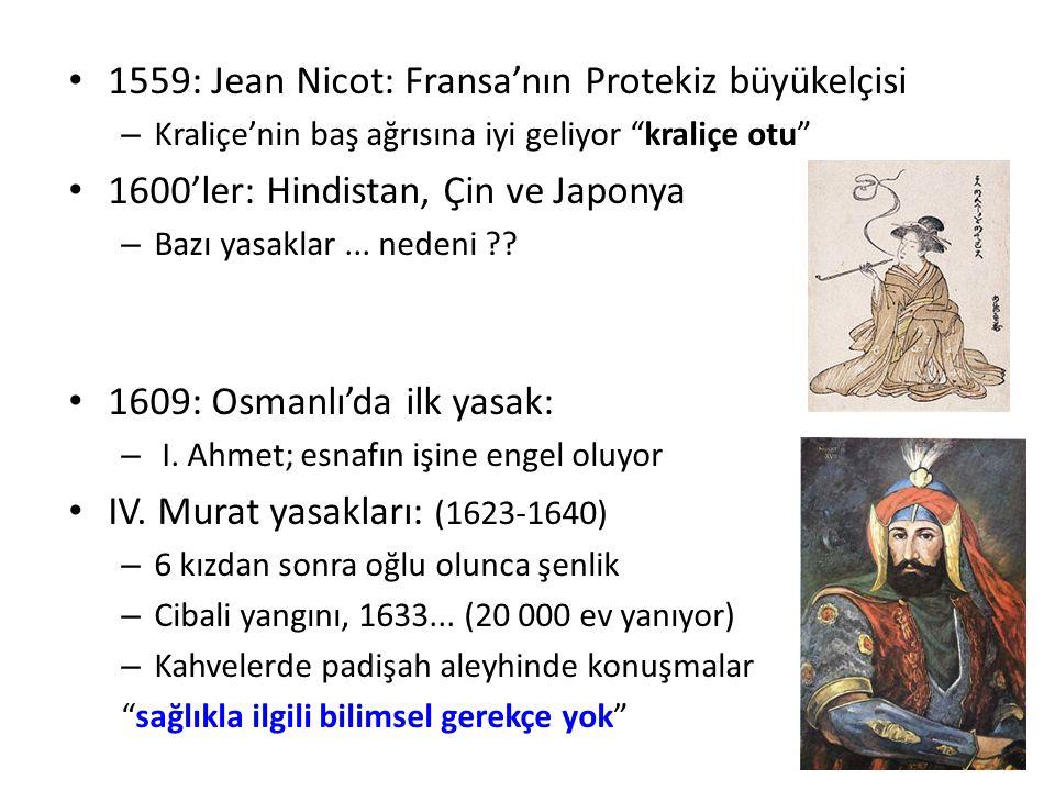 1559: Jean Nicot: Fransa'nın Protekiz büyükelçisi