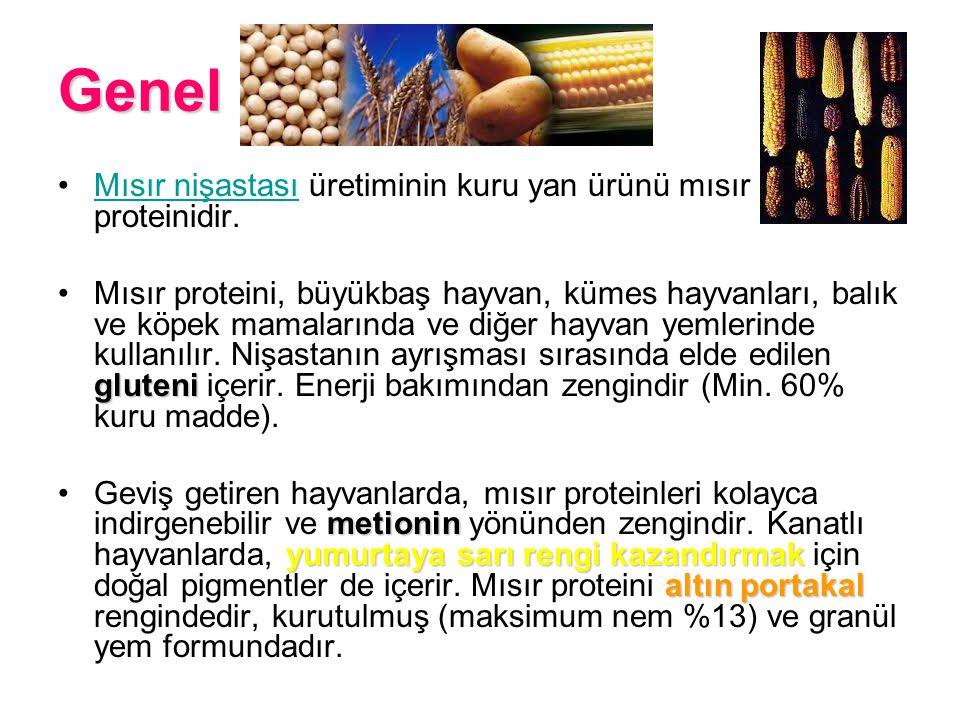 Genel Mısır nişastası üretiminin kuru yan ürünü mısır proteinidir.