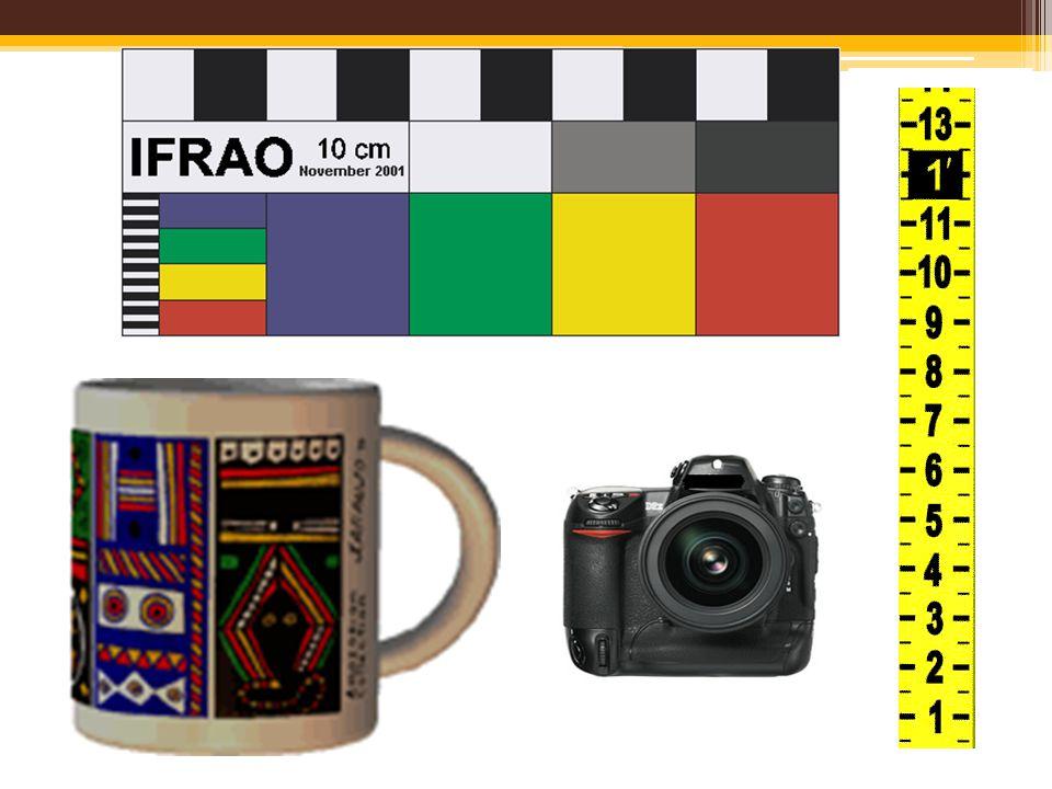 Renk skalaları, cetveller izlerin fotoğraflanmasında kullanılmalı standart skalalar olmasa dahi renkli başka araçların kullanımı sağlanmalı