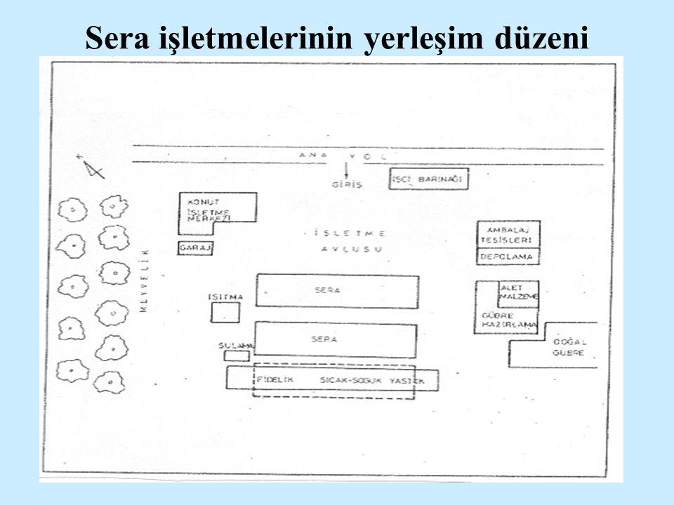 Sera işletmelerinin yerleşim düzeni