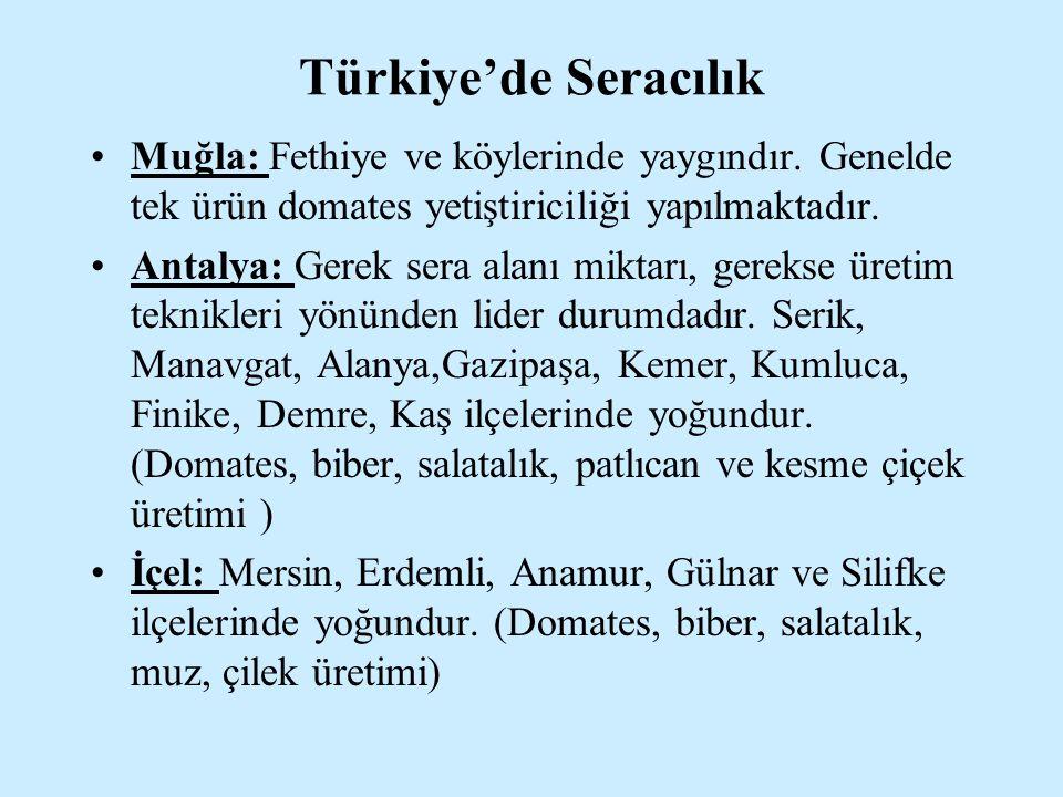 Türkiye'de Seracılık Muğla: Fethiye ve köylerinde yaygındır. Genelde tek ürün domates yetiştiriciliği yapılmaktadır.