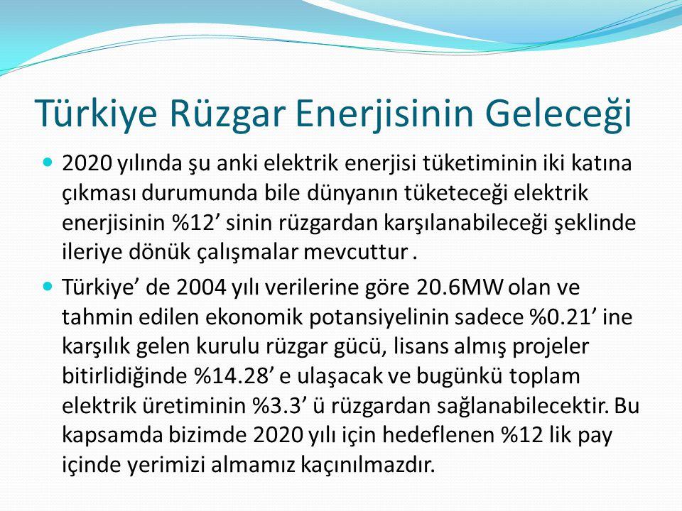 Türkiye Rüzgar Enerjisinin Geleceği