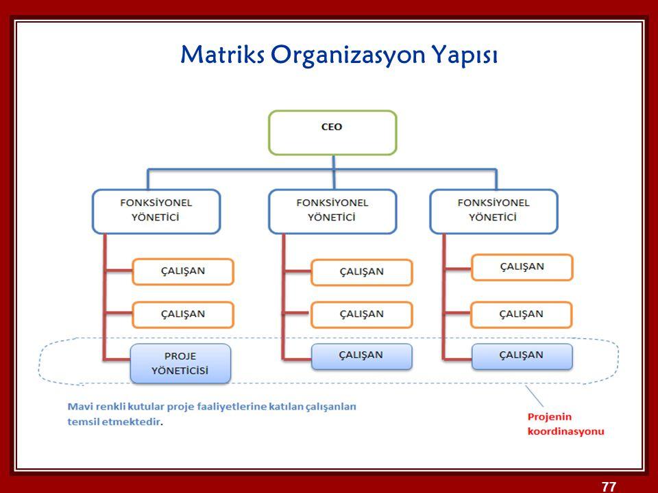 Matriks Organizasyon Yapısı
