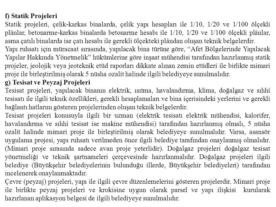 f) Statik Projeleri