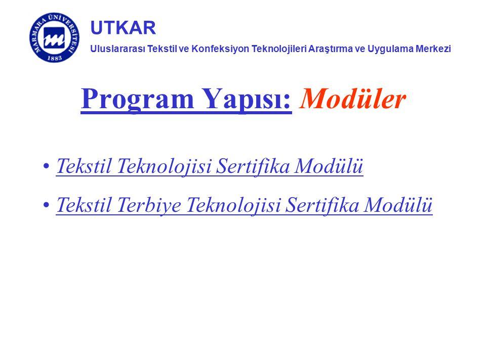 Program Yapısı: Modüler
