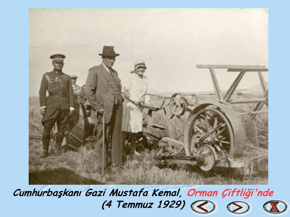 Cumhurbaşkanı Gazi Mustafa Kemal, Orman Çiftliği nde (4 Temmuz 1929)