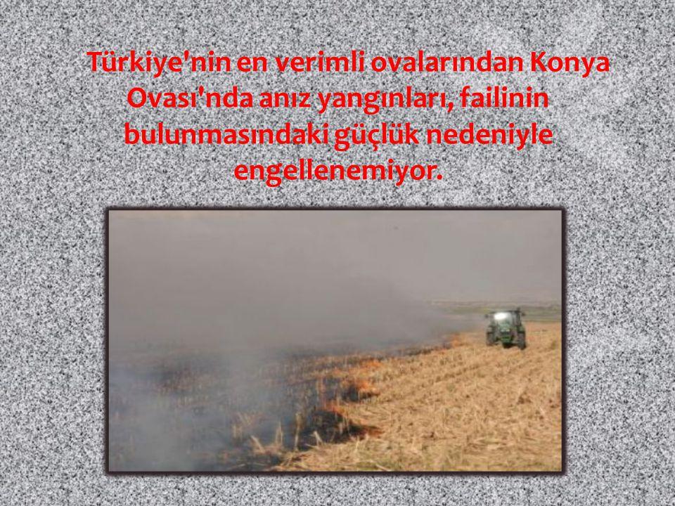 Türkiye nin en verimli ovalarından Konya Ovası nda anız yangınları, failinin bulunmasındaki güçlük nedeniyle engellenemiyor.