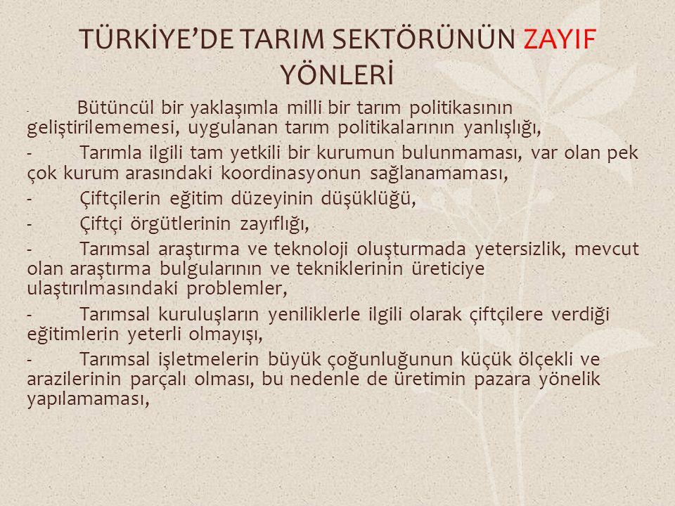 TÜRKİYE'DE TARIM SEKTÖRÜNÜN ZAYIF YÖNLERİ