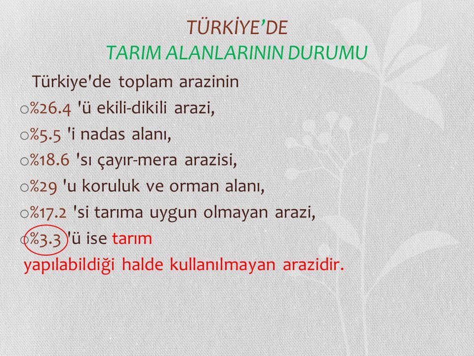 TÜRKİYE'DE TARIM ALANLARININ DURUMU