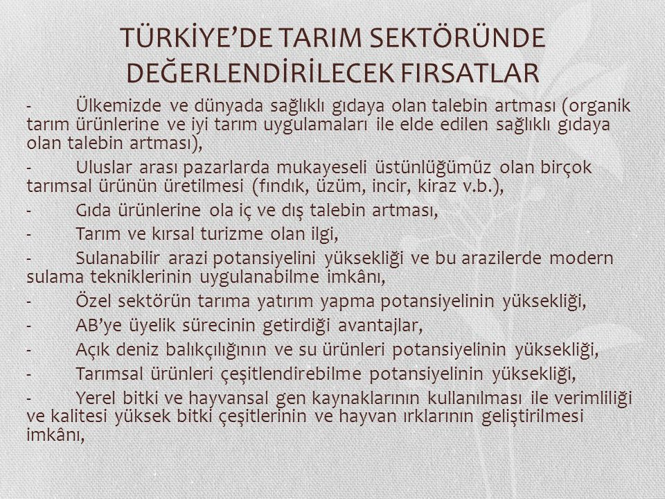 TÜRKİYE'DE TARIM SEKTÖRÜNDE DEĞERLENDİRİLECEK FIRSATLAR