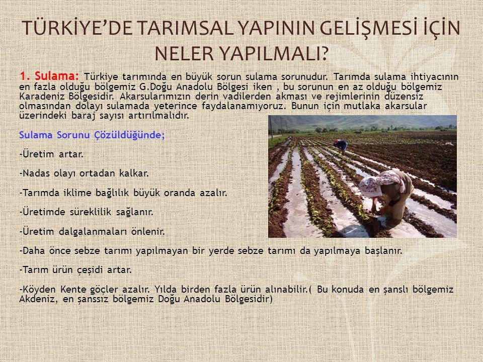 TÜRKİYE'DE TARIMSAL YAPININ GELİŞMESİ İÇİN NELER YAPILMALI
