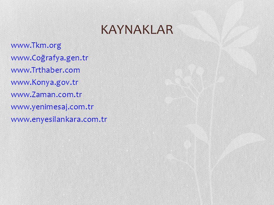 KAYNAKLAR www.Tkm.org www.Coğrafya.gen.tr www.Trthaber.com www.Konya.gov.tr www.Zaman.com.tr www.yenimesaj.com.tr www.enyesilankara.com.tr