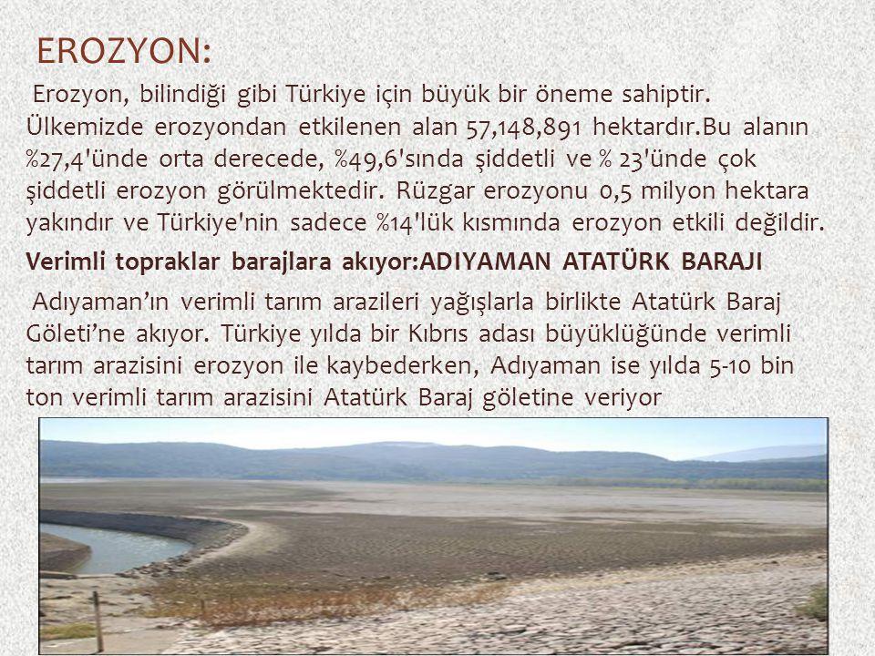 EROZYON: