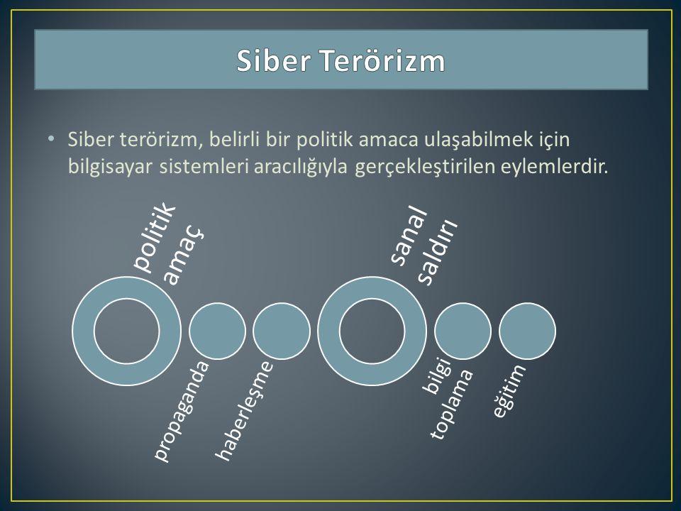 Siber Terörizm politik amaç sanal saldırı